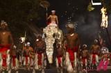 斯里兰卡 佛教庆典
