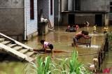 台风过后 重建家园
