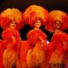 巴黎红磨坊歌舞团印度孟买演出